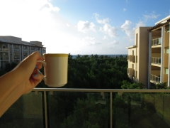 Cheers to the morning