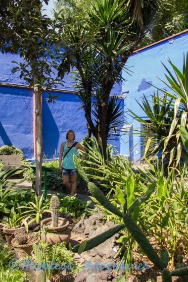 I visited Casa Azul