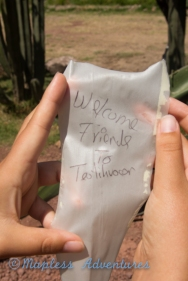Paper from the agave plant...so cool.